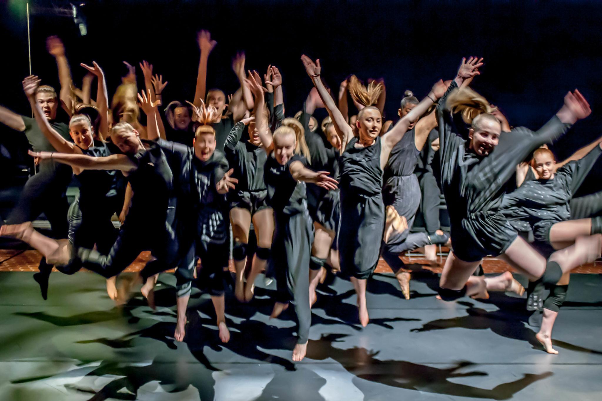 Danseuddannelsen 2013 -2014