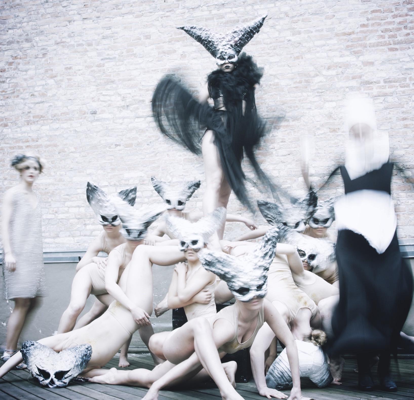 Danseuddannelse 2012-2013
